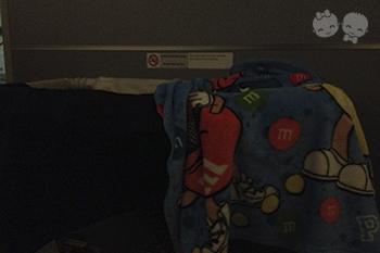 Gabriel dormindo no berço do avião na ida para os EUA. | Crédito: Arquivo pessoal